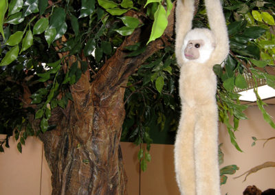 3-D Tree with Monkey